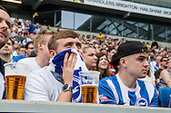 An anxious Brighton watches the live beamback at the American Express Community Stadium in Brighton during the Sky Bet Championship match between Middlesbrough and Brighton and Hove Albion at the Riverside Stadium, Middlesbrough, England on 7 May 2016. Photo by Bennett Dean.