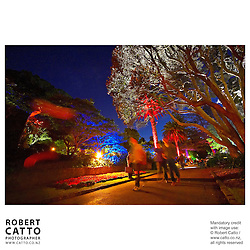 The gardens are lit up at Wellington's Summer City festival, in the Botanic Garden.  <br /><br />Designer Mike Farrand and the MJF Lighting team install this three-week display each year.