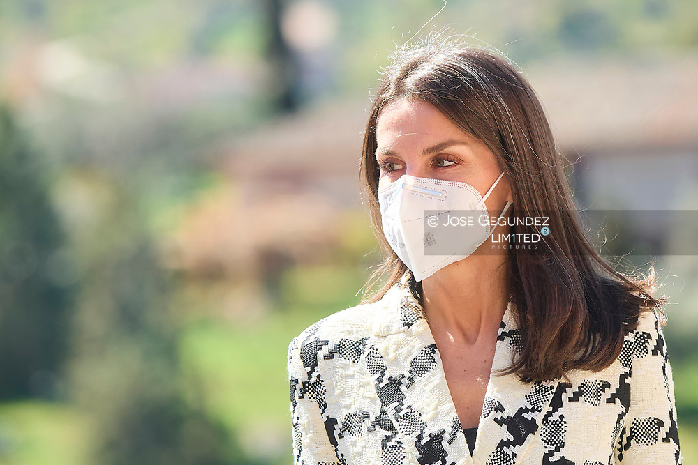 Queen Letizia of Spain attends the ceremony to proclaim the winner of the 'Princess of Girona Foundation Award 2021' in Business category at Victorio Macho House Museum - Royal Foundation of Toledo on March 17, 2021 in Toleo, Spain