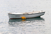 A white rowing boat moored by a yellow buoy Uvala Sumartin bay between Babin Kuk and Lapad peninsulas. Dubrovnik, new city. Dalmatian Coast, Croatia, Europe.