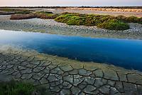 Canal with drought patterns near Etang du Fangassier, Camargue, France