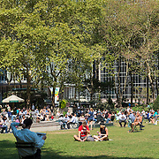 People relaxing on the lawn in Bryant Park, New York
