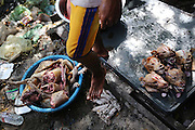 South East Asia, Cambodia, Phnom Penh. Dog meat butchered and prepared for consumption. Dogs heads, entrails and other cuts <br /><br />Whilst some people eat dog meat, it is not commonplace. But it is a poorman's meat as it is a cheaper than beef, pork or chicken. The practice of hunting and catching stray dogs is common place, and sometimes even poaching domestic dogs. The Khmer prefer wild dog to 'farm' grown dogs. However the dogs are often treated inhumanely, and killed by strangulation or even boiled alive. It is thought by some that a dog filled with fear makes better meat. The animal is shaved and butchered. Favorite khmer dishes include dog paw curry and dog's head.<br /><br />Dog meat is eaten all over the world. An estimated 25 million dogs are eaten every year. For some societies eating dog is taboo, for others its acceptable.