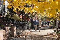 """9 Novembre, 2008. Brooklyn, New York.<br /> <br /> Una coppia passeggia nella Union Street a Park Slope, Brooklyn, NY, una delle vie più famose del quartiere. Park Slope, spesso definito dai newyorkesi come """"The Slope"""", è un quartiere nella zona ovest di Brooklyn, New York, e confinante con Prospect Park.  Park Slope è un quartiere benestante che ha il maggior numero di nascite, la qualità della vita più alta e principalmente abitato da una classe media di razza bianca. Per questi motivi molte giovani coppie e famiglie decidono di trasferirsi dalle altre municipalità di New York a Park Slope. Dal punto di vista architettonico, il quartiere è caratterizzato dai brownstones, un tipo di costruzione molto frequente a New York, e da Prospect Park.<br /> <br /> ©2008 Gianni Cipriano for The New York Times<br /> cell. +1 646 465 2168 (USA)<br /> cell. +1 328 567 7923 (Italy)<br /> gianni@giannicipriano.com<br /> www.giannicipriano.com"""