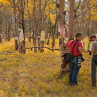 Photographers stand among Native American prayer cloths that adorn aspen trees at a sacred site in the Saskatchewan River Valley near Banff National Park in Alberta, Canada.