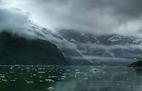 Tracy Arm Fjørd, Alaska