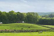 Seasonal views of a horse farm