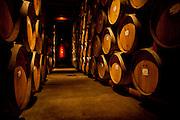 Oak wine barrels in wine cellar in a Napa Valley winery, California