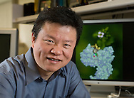 Ning Zheng in his office at the University of Washington Medical Sciences building in Seattle. Client: HHMI