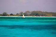 A dhow sailing in the blue seas near Mnemba Island near Zanzibar, Tanzania