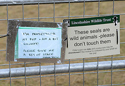 © Licensed to London News Pictures. 19/11/2015. North Somercotes, UK. Signs on display at the grey seal colony at Donna Nook Nature Reserve, North Somercotes, Lincolnshire. Every November and December the grey seals come ashore and give birth to their pups near to the sand dunes at the reserve. Photo credit : Anna Gowthorpe/LNP