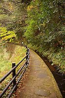 Yugashima Autumn Trail near Shuzenji, Izu - Shuzenji's unique history has inspired travelers and Japanese writers alike and listed as one of the 100 Best Hot Springs in the country