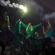 Bursaspor's Supporters fans during their Turkish superleague soccer match Fenerbahce between Bursaspor at the Sukru Saracaoglu stadium in Istanbul Turkey on Sunday 10 March 2013. Photo by Aykut AKICI/TURKPIX