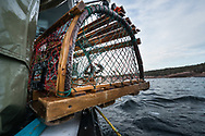 Charles and Norm fish for lobster off the northeast coast of Cape Breton Island, near Neils Harbour, Nova Scotia, Canada May 31, 2017. Lobster season May 15 to July 15 and then moves onto crab fishing.