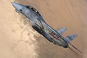 F-14 Tomcat, VF-51
