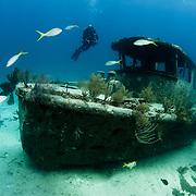 A SCUBA diver explores a shipwreck in The Bahamas