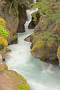 Avalanche Creek Waterfall Rages Down in Glacier National Park