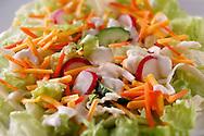 Fresh carrot, lettuce and radish salad food photos