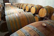 Chateau de Montpezat. Pezenas region. Languedoc. Barrel cellar. France. Europe.