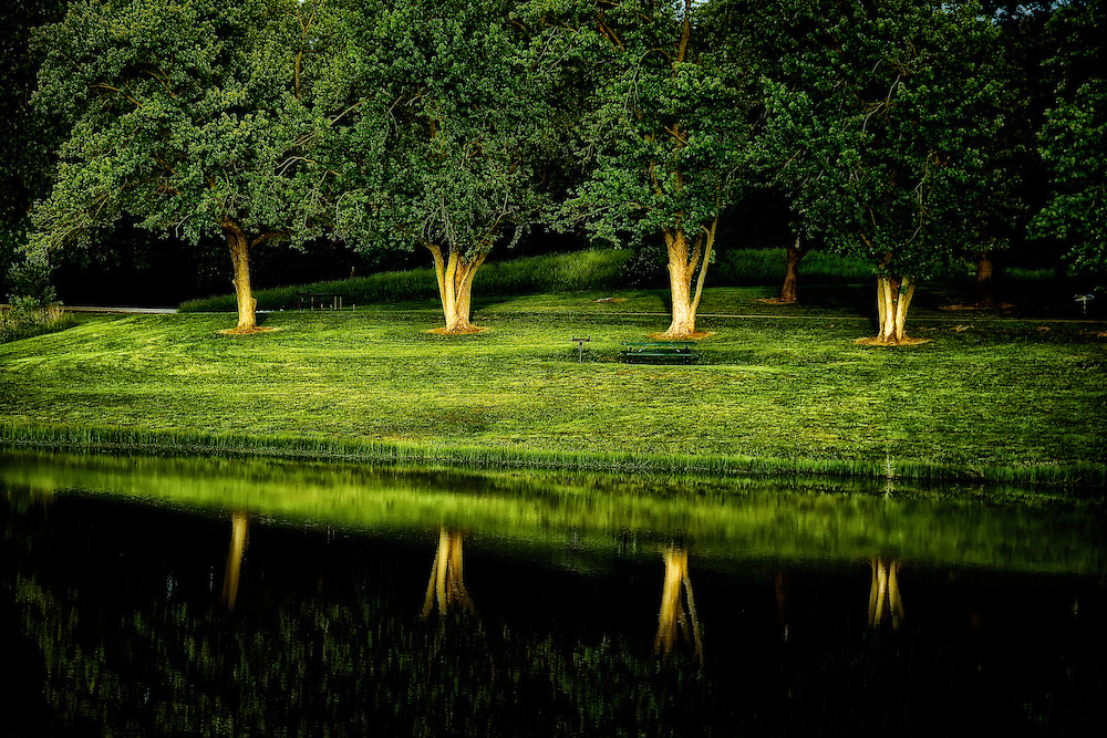 The soft velvet green grass and foliage reflects off the lake at Broemmelsiek Park as a summer evening winds down.