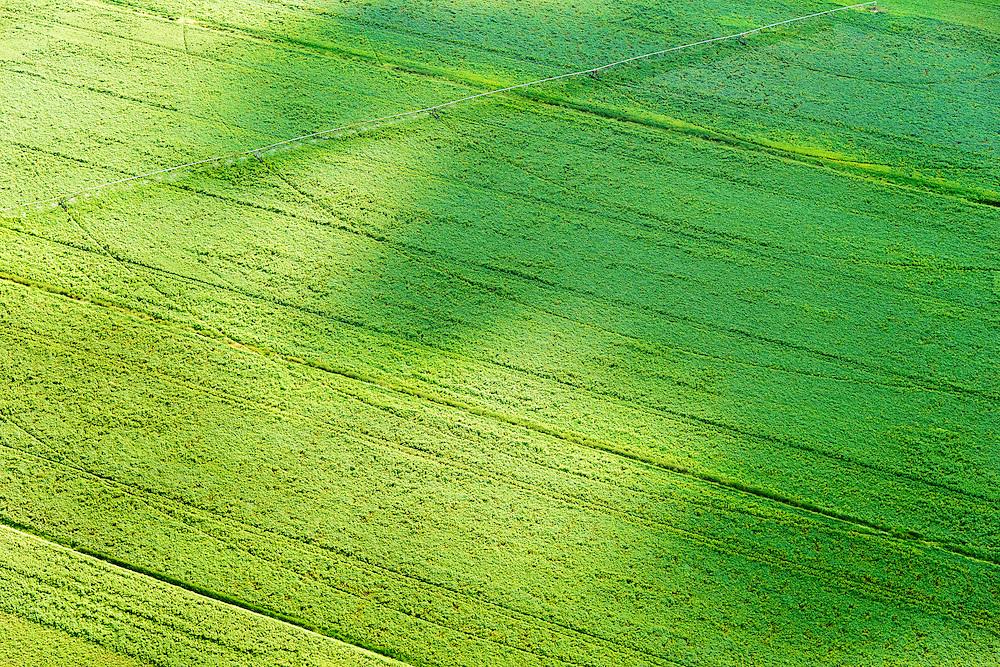 Nederland, Drenthe, Gemeente Borger-Odoorn, 05-08-2014; Tweede Exloermond, Noorderboerplaatsen. Gewassen op de velden in de veenkolonien worden besproeid.<br /> Crops on the fields are irrigated.<br /> <br /> luchtfoto (toeslag op standard tarieven); aerial photo (additional fee required); copyright foto/photo Siebe Swart