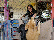 Maite Carreño Flores , co-founder and operator of the Soy Callejerito shelter, feeds two rescued dogs as she prepares a meal.