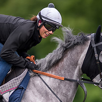 Méli Mélou smiling for the camera on Long Hill Gallop, Newmarket
