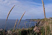 A view from the Cabot Trail in Cape Breton, NS.