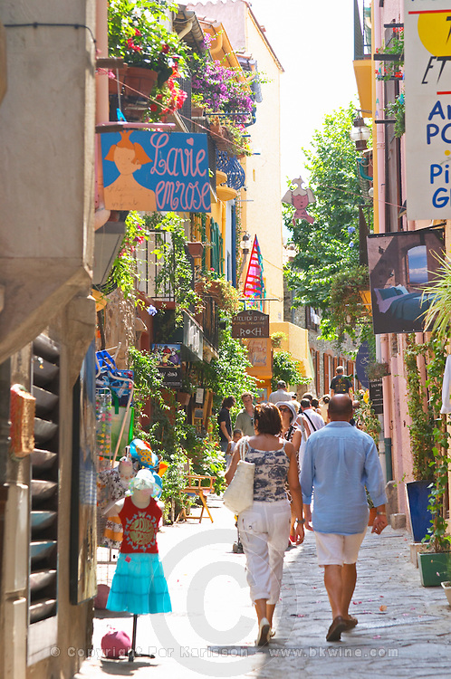 A narrow street in the old town. Collioure. Roussillon. France. Europe. Colourful houses, trees and flowers make the village very pretty.