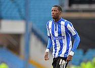 Sheffield Wednesday Forward Lucas Joao during the Sky Bet Championship match between Sheffield Wednesday and Leeds United at Hillsborough, Sheffield, England on 16 January 2016. Photo by Adam Rivers.