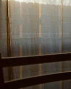 Photographs from around the house; in particular, the east-facing window in the morning light.