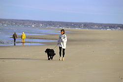 Woman Jogging With Dog On Beach