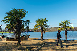© Licensed to London News Pictures. 27/02/2021. LONDON, UK. Palm trees give a tropical feel as children on the beach enjoy the warm temperatures at Ruislip Lido in north west London on a sunny spring day.  Photo credit: Stephen Chung/LNP