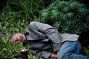 A man lies sleeping amongst plants.