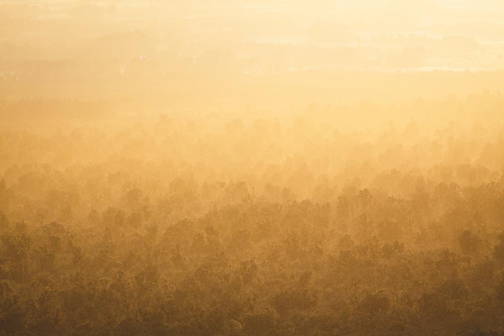 Sunlight shines through the rising fog over beech forests on sloping side of Mount Taranaki, Egmont National Park, New Zealand Ⓒ Davis Ulands | davisulands.com