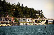 A summer day out on the water in Maine by McLoon's Lobstah shack.