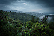 Mashpi reserve, Cloud forest, Ecuador, South America