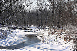 23 February 2008: Water begins to thaw on a creek that is still covered by snow running through the woods.