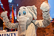 24 AUGUST 2010 -- TUCSON, AZ: A GOP Elephant leads a Republican cheer in Tucson Tuesday night. Gov Brewer made an appearance at Mr. An's Teppan Steak & Sushi in Tucson Tuesday night just as early returns in Arizona's primary elections were starting to come in.  Brewer's victory has been credited to her signing SB 1070 and taking a tough stand on illegal immigration and against the Obama administration.  PHOTO BY JACK KURTZ