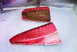 blocks of large tuna meat, Thunnus sp., on ice for sale at wholesale store, Tsukiji Fish Market or Tokyo Metropolitan Central Wholesale Market, the world's largest fish market, hadling over 2,500 tons and over 400 different kind of fresh sea food per day
