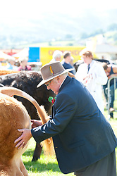 © Licensed to London News Pictures. 22/07/2014. Llanelwedd, UK. A record numbers of visitors in excess of 240,000 are expected this week over the four day period of Europe's largest agricultural show. Livestock classes and special awards have attracted 8,000 plus entries, 670 more than last year. The first ever Royal Welsh Show was at Aberystwyth in 1904 and attracted 442 livestock entries. Photo credit: Graham M. Lawrence/LNP