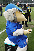 Haydon the Womble enjoying a hamburger during the The FA Cup match between AFC Wimbledon and Charlton Athletic at the Cherry Red Records Stadium, Kingston, England on 3 December 2017. Photo by Matthew Redman.
