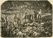 Californina Gold Rush: Washing for gold in the Bedwell River in the Californian gold fields. Engraving, 1853.