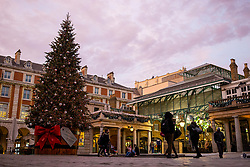© Licensed to London News Pictures. 24/11/2020. London, UK. Passersby admire the Christmas tree in Covent Garden, central London, as the sun sets. The government has announced that tiered restrictions will be reintroduced when the England-wide lockdown ends on 2 December. Photo credit: Rob Pinney/LNP