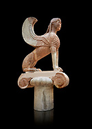 Archaic ancient Greek sculpture of a Sphinx originally on top of the column of Naxos, 570-560 BC, Delphi National Archaeological Museum.   Against black