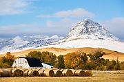 Fall on the Rocky Mountain Front near Augusta, Montana.