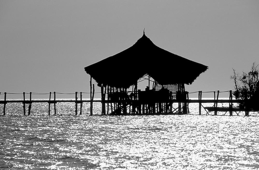 Pemba Island, Tanzania, Africa