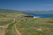 Rural road trail through green grass coastal hills in spring, Santa Cruz Island, Channel Islands, California