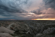 Evening light settles on the Badlands as a Bighorn sheep wanders the land.