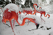 Snow covered flamingo illuminations in Kings Heath Park after heavy snow fall on Sunday 10th December 2017 in Birmingham, United Kingdom. Deep snow arrived in much of the UK, closing roads and making driving treacherous, while many people simply enjoyed the weather.